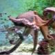 Что такое осьминог и как он выглядит?