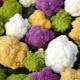 Экзотические овощи: разновидности и вкусовые качества