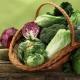 Список крестоцветных овощей