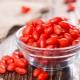 Ягоды годжи: особенности посадки и ухода за растением