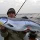 Чем лосось отличается от форели?