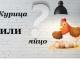 Что появилось первым: яйцо или курица?