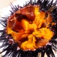 Как правильно готовить и есть морского ежа?