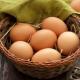 Куриные яйца: особенности, свойства и применение