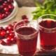Польза, вред и калорийность клюквенного морса