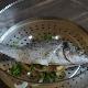 Рыба в пароварке: свойства, время и рецепты приготовления