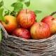 Симптомы и причины возникновения аллергии на яблоки