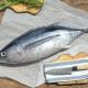 Состав, калорийность и пищевая ценность тунца