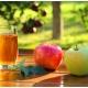 Состав, польза и вред яблочного сока