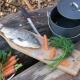 Выбираем доску для чистки и разделки рыбы с зажимом
