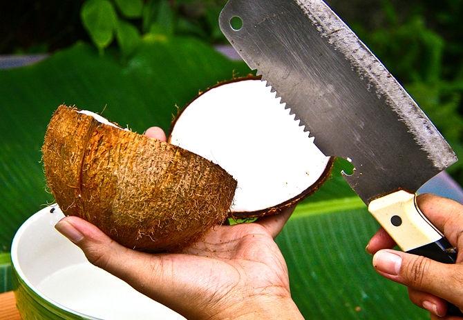 Как открыть кокос или его разбить в домашних условиях: правильные способы