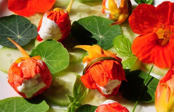 Цветы в кулинарии настурции