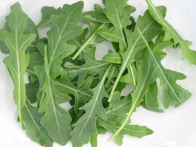 Виды салатных листьев фото