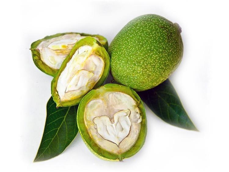 Зеленый грецкий орех: полезные свойства и вред, варенье и настойка на водке