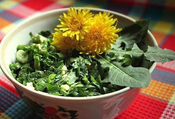 Рецепты салатов из растений