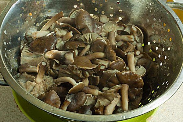 можно ли есть грибы при повышенном холестерине