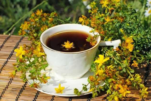 Зверобой чай для беременных 46