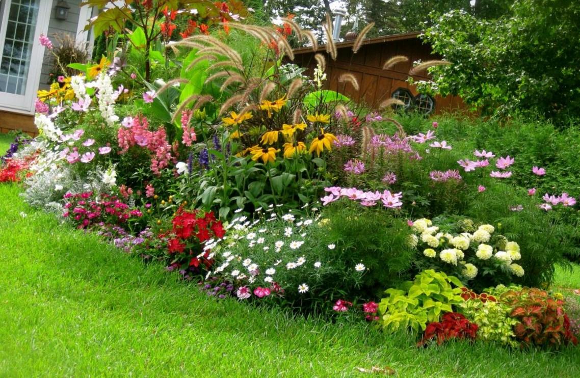 Цветы в саду и огороде своими руками фото