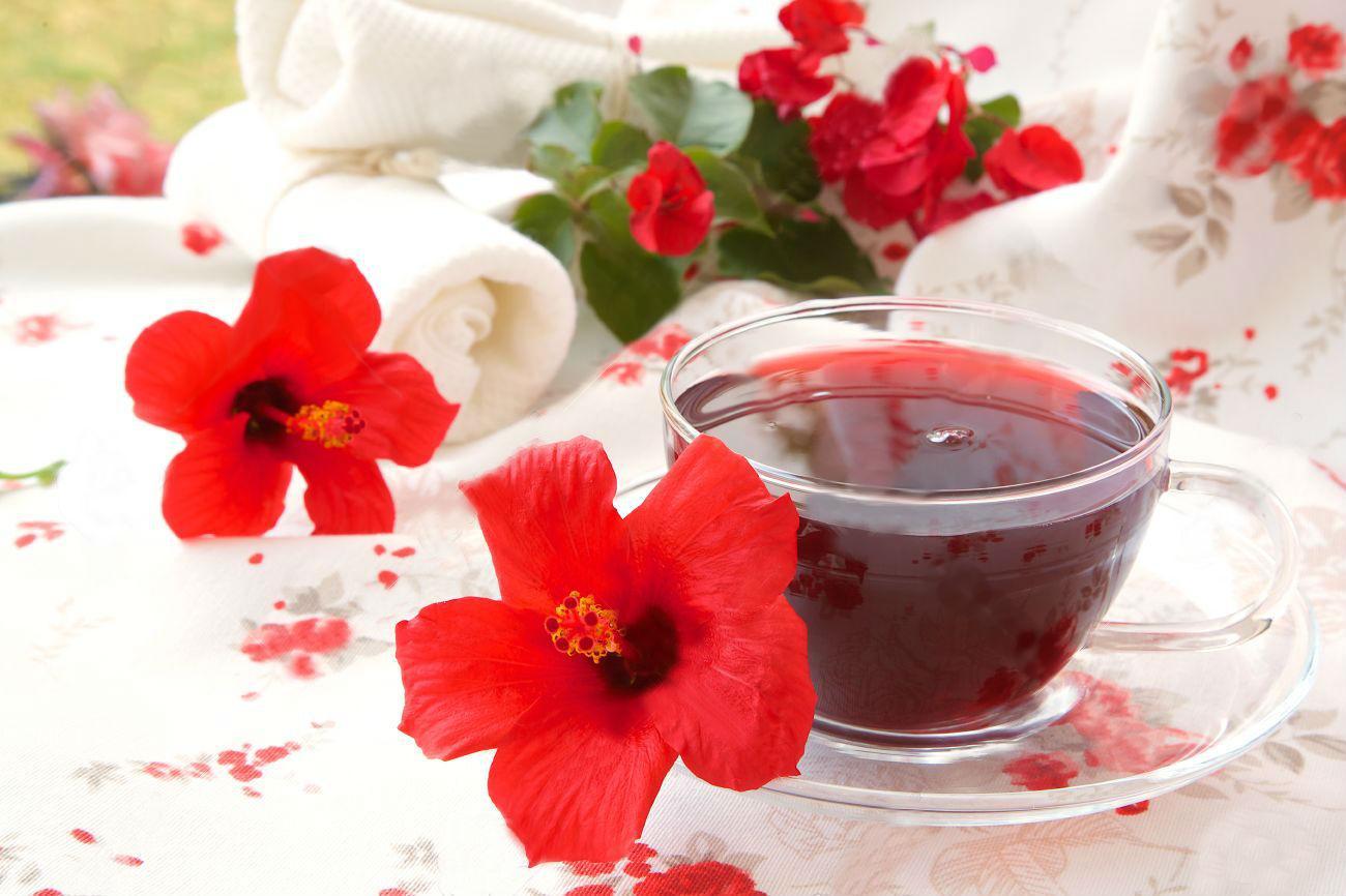 Чай каркаде: состав, польза и свойства. Вред и противопоказания к приему чая каркаде. Как правильно заваривать каркаде: рецепты