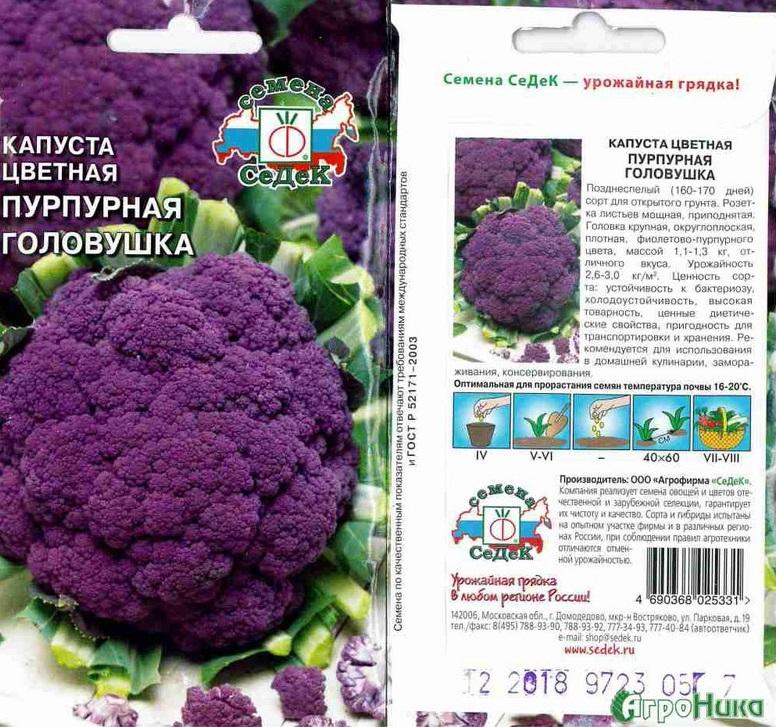 Фиолетовая цветная капуста выращивание 52