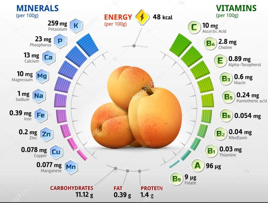 Сколько калорий в сушеной кураге, как правильно выбрать хорошую курагу