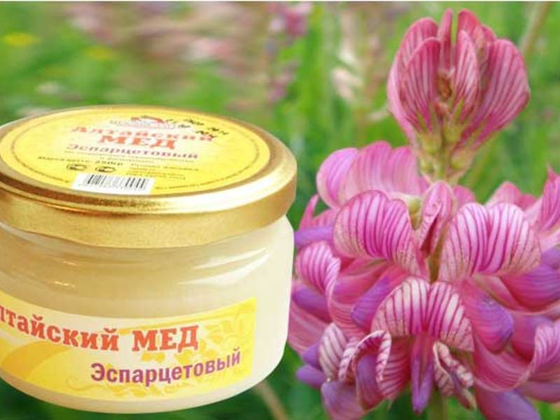 мед эспарцетовый фото