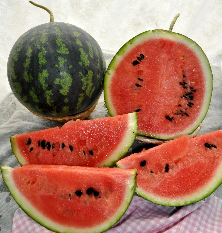 Когда созревают арбузы и как отличить спелые ягоды