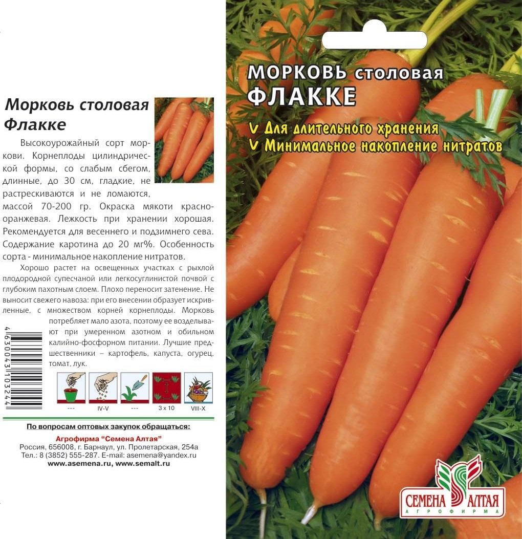 Виды и сорта моркови: красная и зеленая морковь, белая и морковь желтая