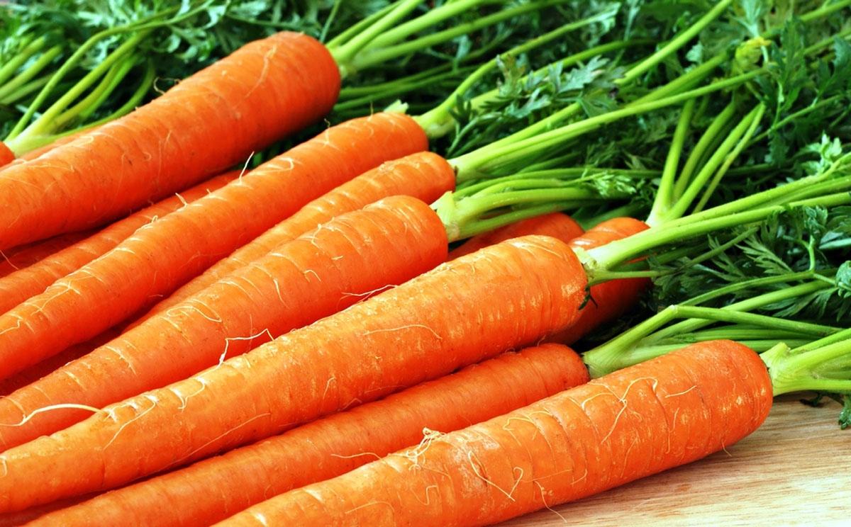 Как садить морковь на зиму на урале