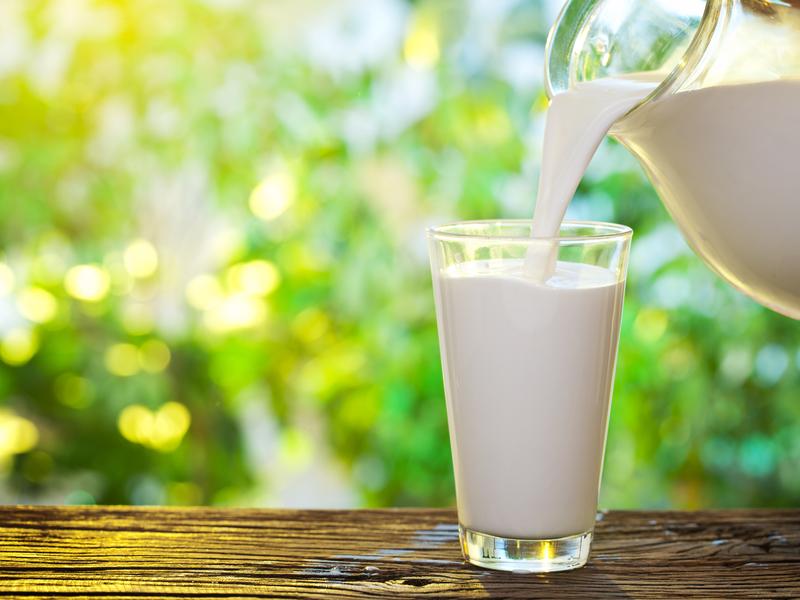 В Курской области стали производить больше молока