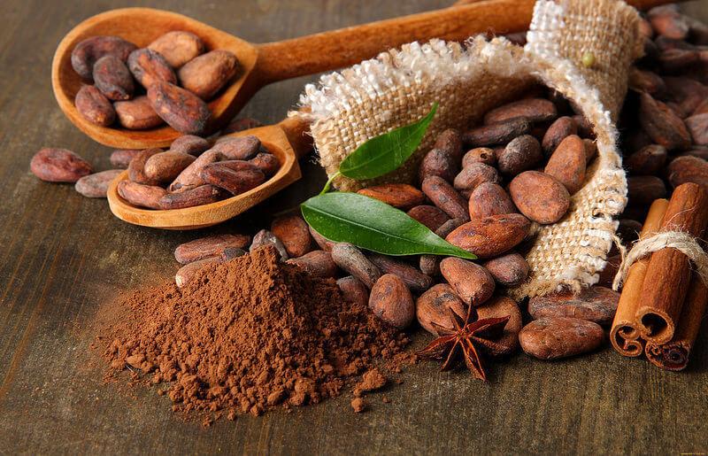 Какао дерево - где растет как вырастить полезные свойства видео