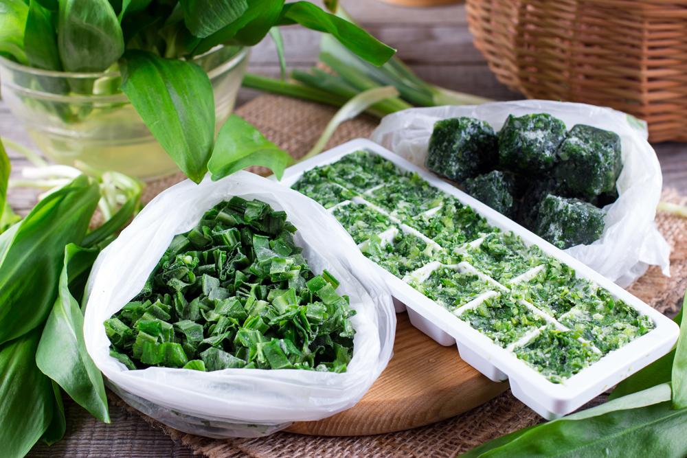 Как заморозить зеленый лук на зиму в домашних условиях способы