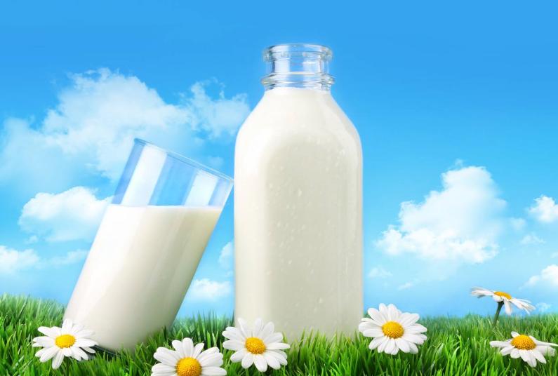 Нормальная жирность коровьего молока