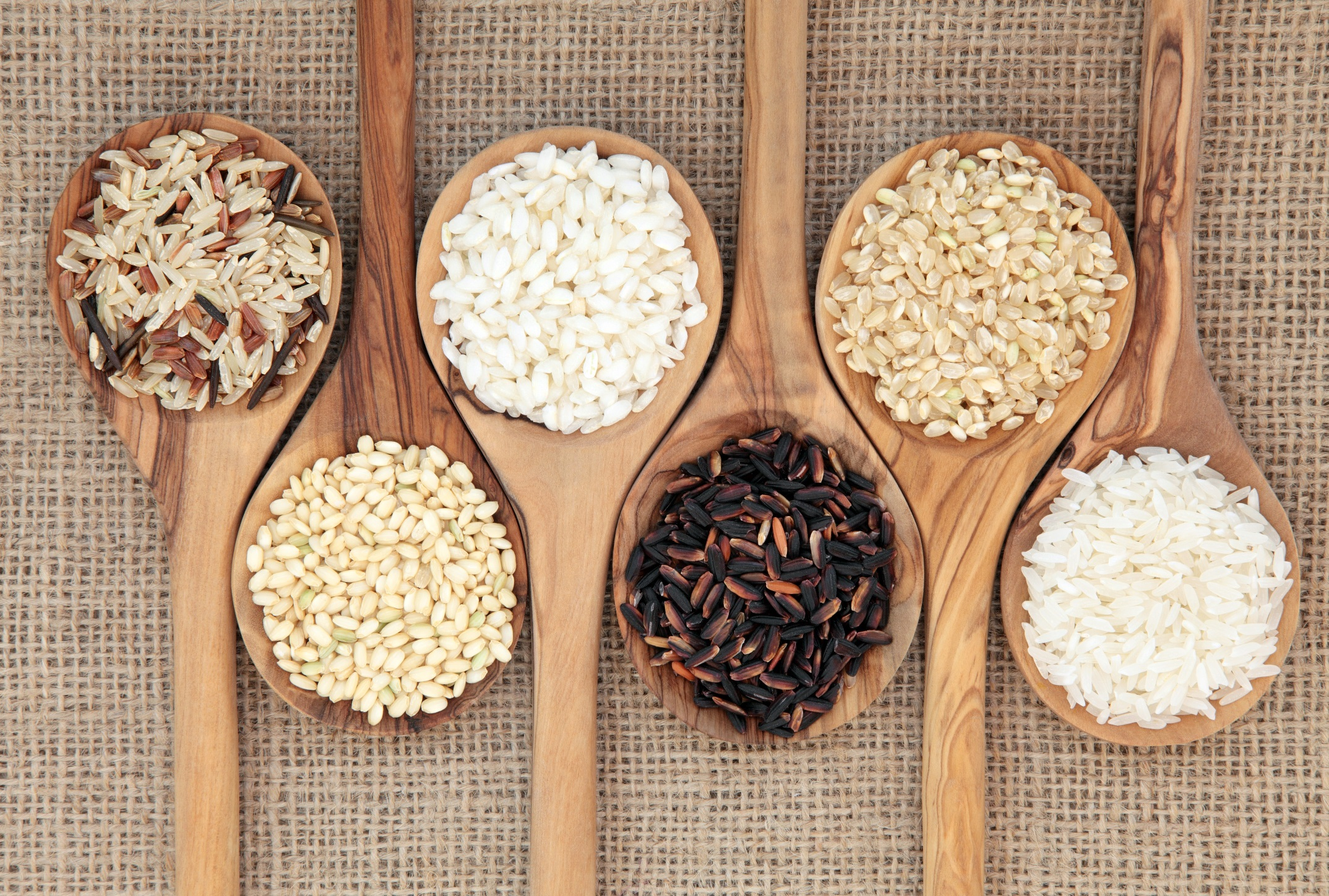 индюк все виды риса фото улитки второй