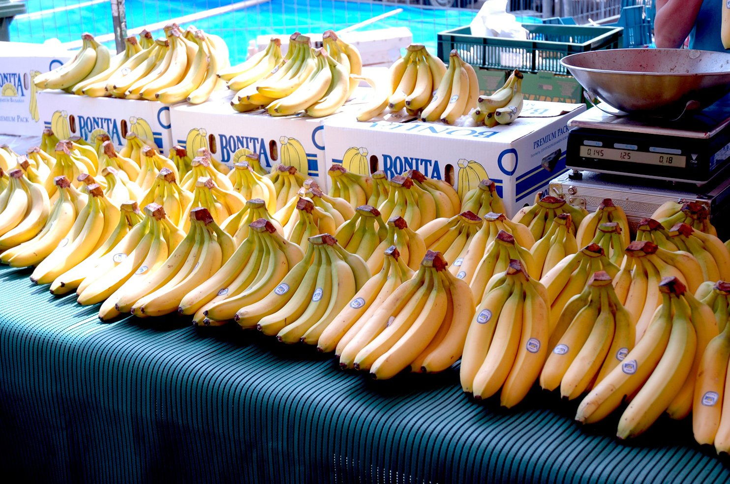 банан-демо слоттары Багам аралдарына барады