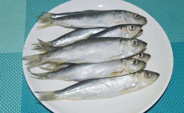 салака рецепты приготовления соленая