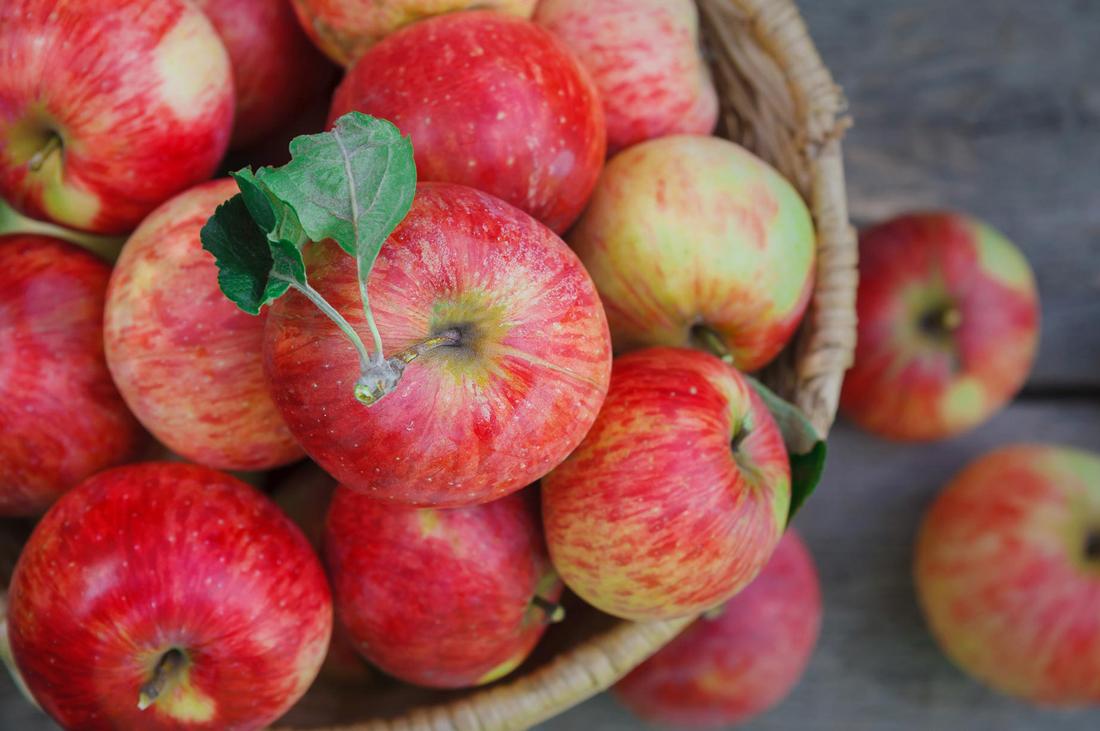 Моченые яблоки - польза или вред изоражения