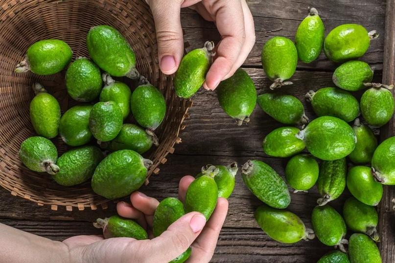 Как выбрать фейхоа? Как правильно выбрать спелый фрукт на рынке и в магазине? Советы по хранению