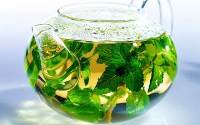 Противопоказания чая с мелиссой