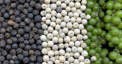 Перец горшком разного вида