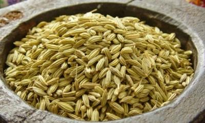 Семена фенхеля используют в лекарственных целях