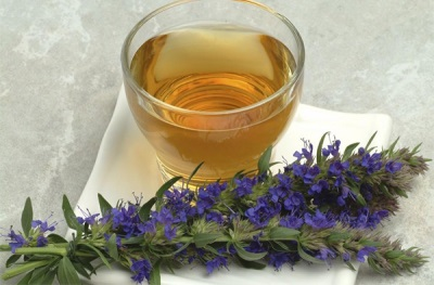 Чай с иссопом