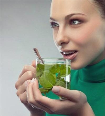Мятный чай на ранних сроках беременности