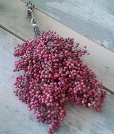 Розовый перец используют и в лечебных целях