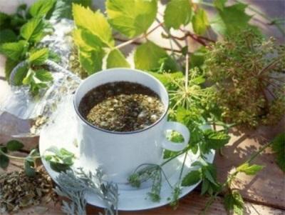 Чай с синеголовником, хмелем и мелиссой