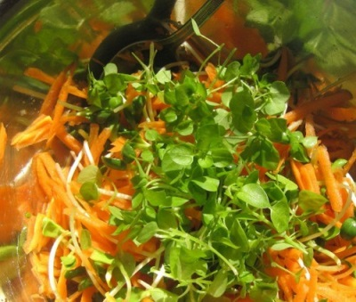 Салат с морковью и звездчаткой