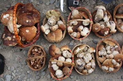 Белые грибы на рынке