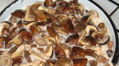 Варить белые грибы
