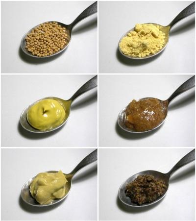 Варианты горчицы