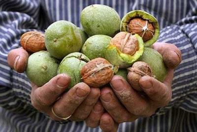 Грецкие орехи прекрасно сочетаются со многими продуктами особенно с медом